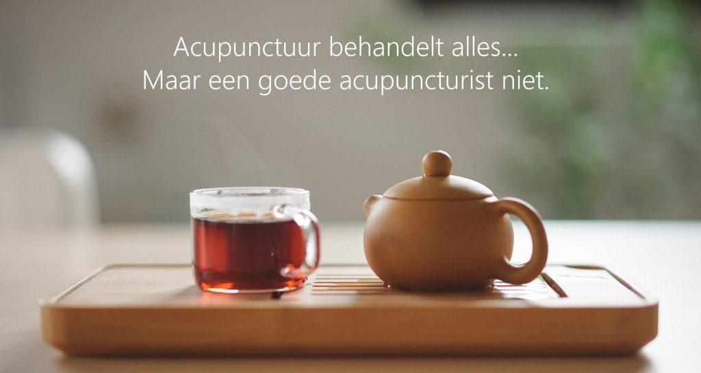 Acupunctuur behandelt alles, maar een goede acupuncturist niet