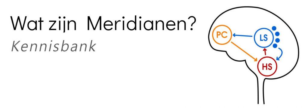Blogpost over wat meridianen zijn